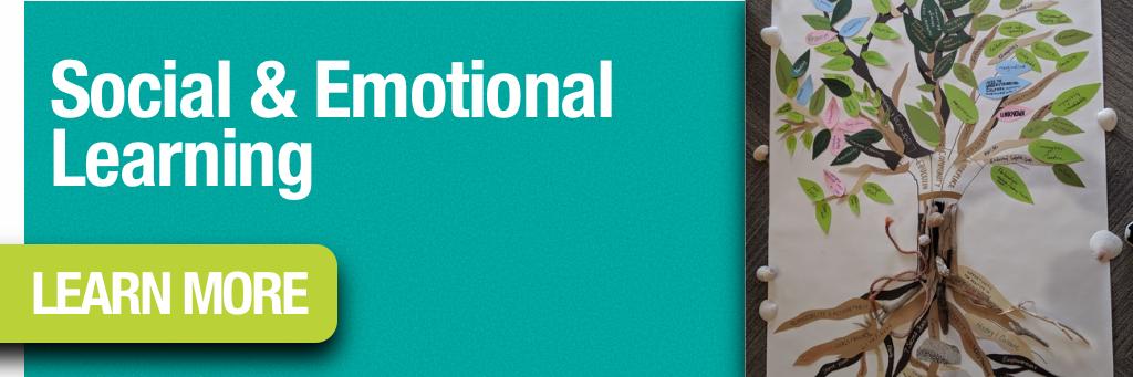 Social & Emotional Learning Program